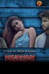 18+ Pendrive 2020 S01E1 Hindi EknightShow Web Series 720p HDRip 450MB Download & Watch Online